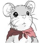 Miko Wu profile image