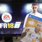FIFA18cheats profile image