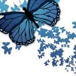 Fulya profile image