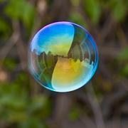 bubble2010
