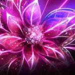 dramalover78 profile image