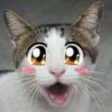 Sunnyahn79 profile image