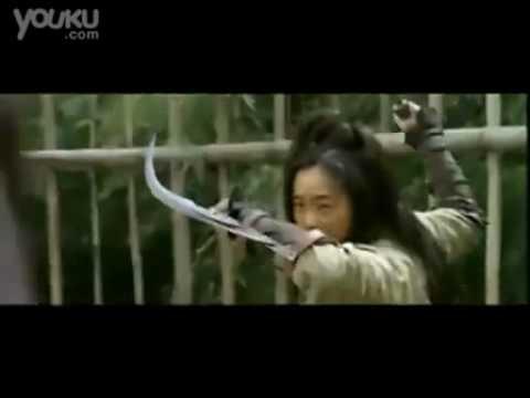 Trailer : Reign os Assassins (2010)