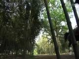 The Myth Episode 24 (Part 1)