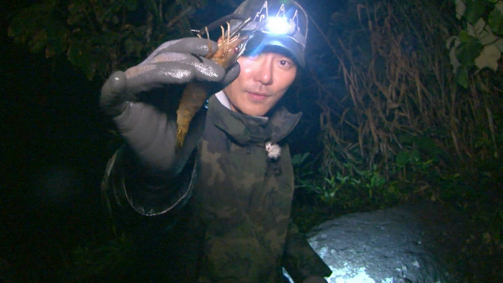 Law of the Jungle Episode 289