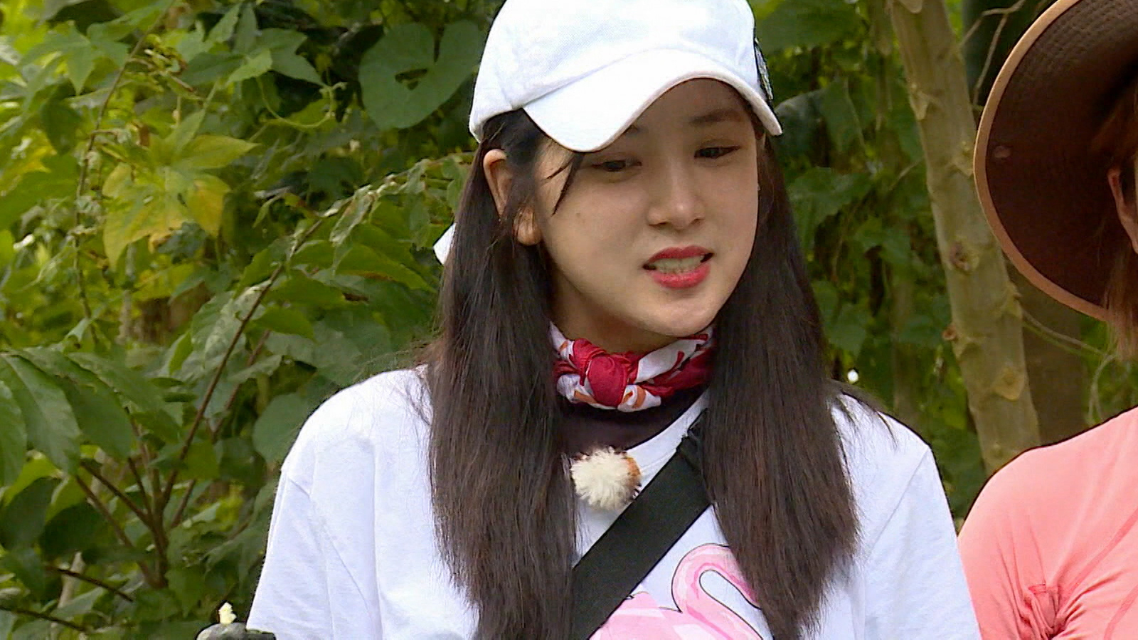 Law of the Jungle Episode 291